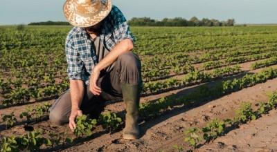 Agricultura familiar de RO deve receber investimento de R$ 6 mi