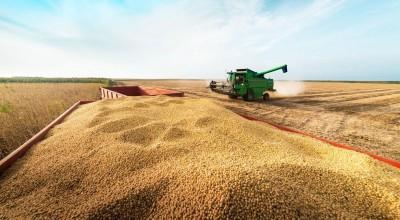 RO: Produção na safra 2020/21 é recorde e chega perto de 2,6 milhões de toneladas