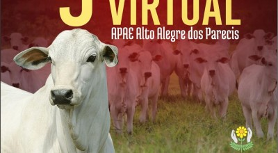 Apae de Alto Alegre dos Parecis realizará o 5º Leilão Virtual