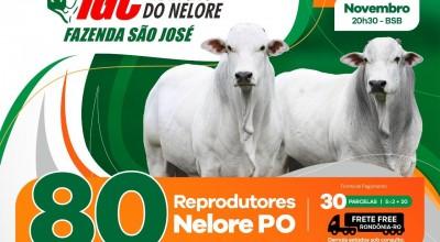Leilão IGC de Rolim de Moura será transmitido pelo Terraviva