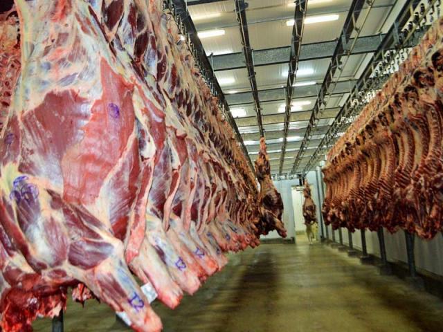 Mercado da carne oscilante em Rondônia