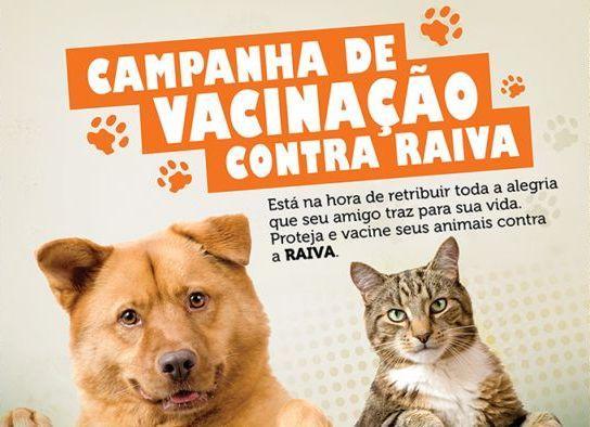 Rolim: Inicia nesta segunda-feira, 16,  a Campanha de vacinação anti-rábica na zona rural