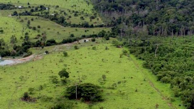 CAR: Adesão ao Cadastro Ambiental Rural pode ser feita até o fim de 2019