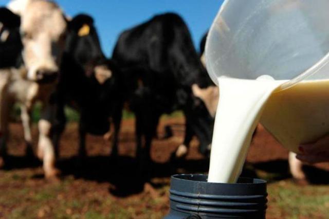 O preço do leite cai 2,5% em março e recuo no 1º trimestre chega a 10%