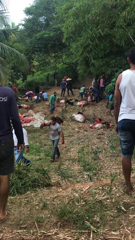 Carreta carregada com 85 cabeças de gado tomba após sofrer pane, na RO-489 em São Felipe; 75 garrotes morreram -